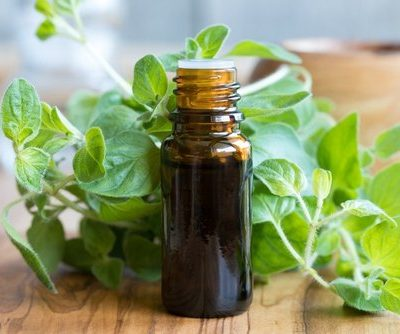 Oregano Oil: How to Make it, Uses and Dosage