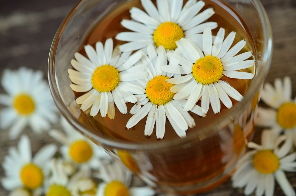 Drinking chamomile tea is generally considered very safe
