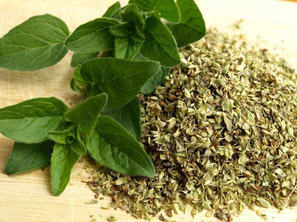 Oregano can be used both fresh and dry