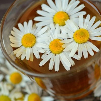 Chamomile Tea: 6 Powerful Benefits and 7 Practical Uses