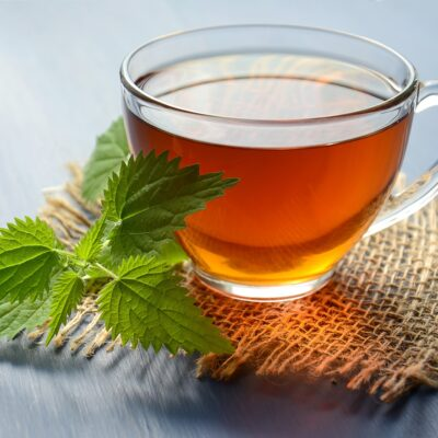 13 Astonishing Benefits of Nettle Tea and other forms of the plant