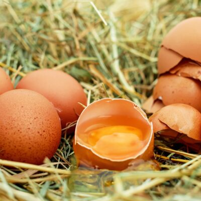 What Changes Chicken Egg Yolk Color?