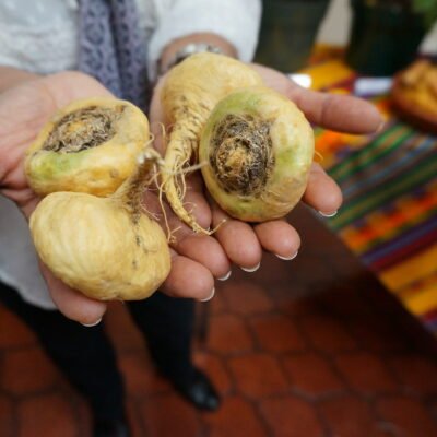 10 Benefits of Maca Root, Including Higher Fertility and Libido!